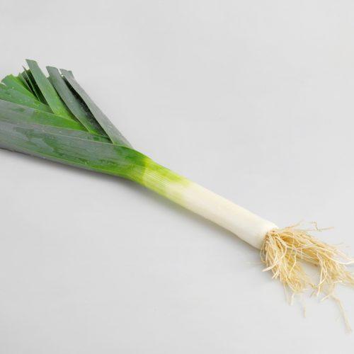 PROFI, Zelenina TAKII - Pór pravý Mako Nice F1, p2906 (Allium porrum L.)