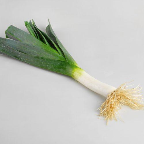 PROFI, Zelenina TAKII - Pór pravý Hy024 F1, p2923 (Allium porrum L.)