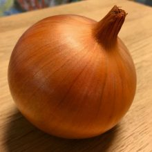 PROFI, Zelenina TAKII - Cibule kuchyňská Bruce F1, p0538 (Allium cepa L.)
