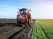 Výkup zemědělské půdy, orné půdy, zemědělských pozemků